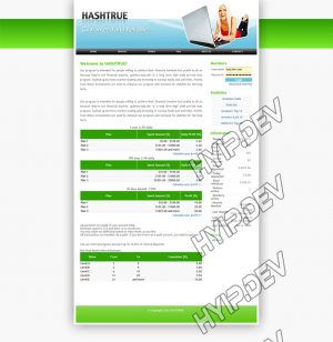 goldcoders hyip template no. 004, home page screenshot
