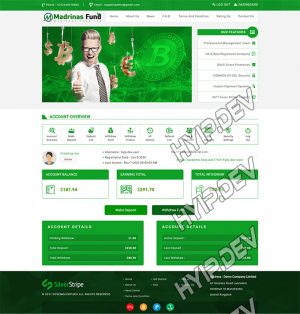 goldcoders hyip template no. 040, account page screenshot