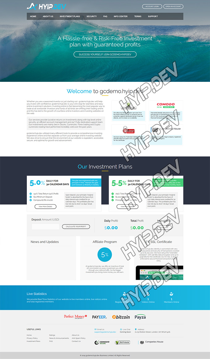 goldcoders hyip template no. 0.55, home page screenshot