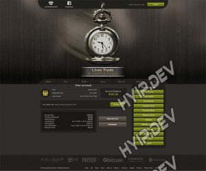 goldcoders hyip template no. 071, account page screenshot