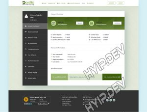 goldcoders hyip template no. 081, account page screenshot