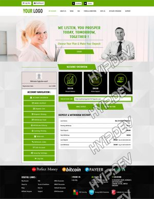 goldcoders hyip template no. 105, account page screenshot
