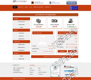 goldcoders hyip template no. 125, account page screenshot