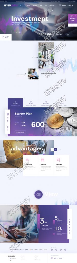 goldcoders hyip template no. 133, home page screenshot