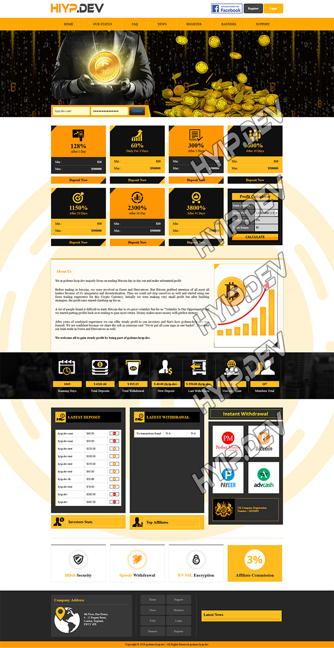 goldcoders hyip template no. 145, home page screenshot