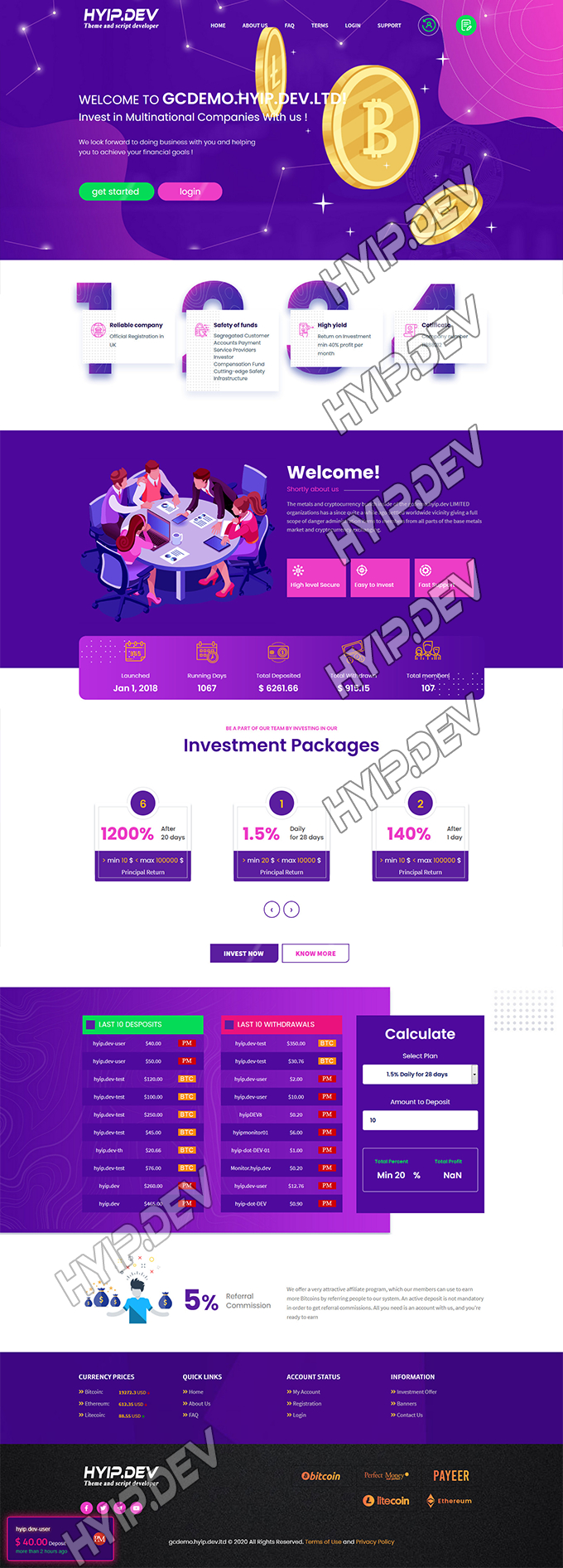 goldcoders hyip template no. 148, home page screenshot