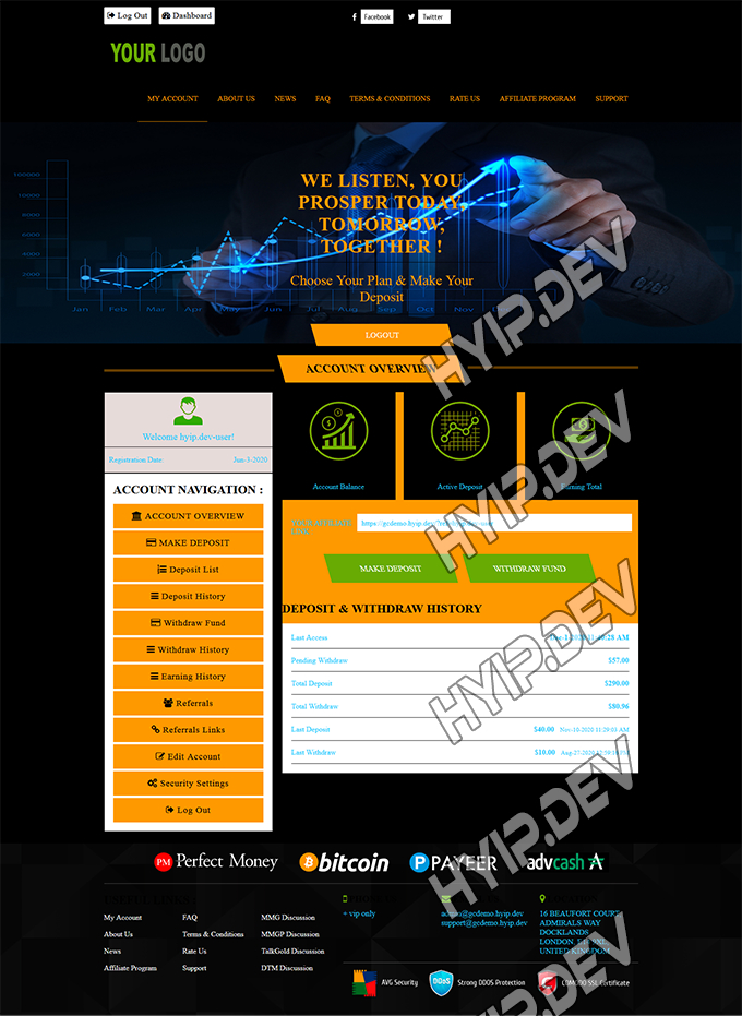 goldcoders hyip template no. 157, account page screenshot