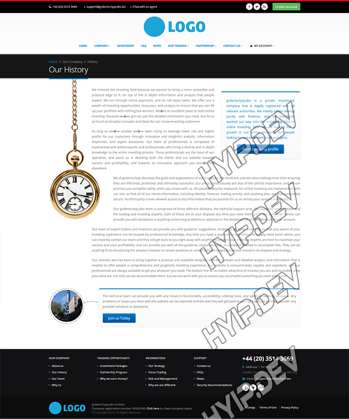 goldcoders hyip template no. 166, history page screenshot