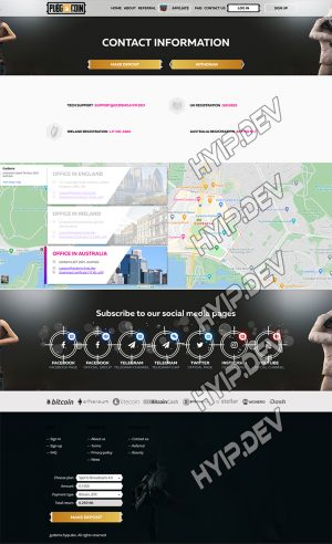 goldcoders hyip template no. 172, support page screenshot