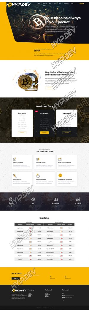 goldcoders hyip template no. 188, home page screenshot